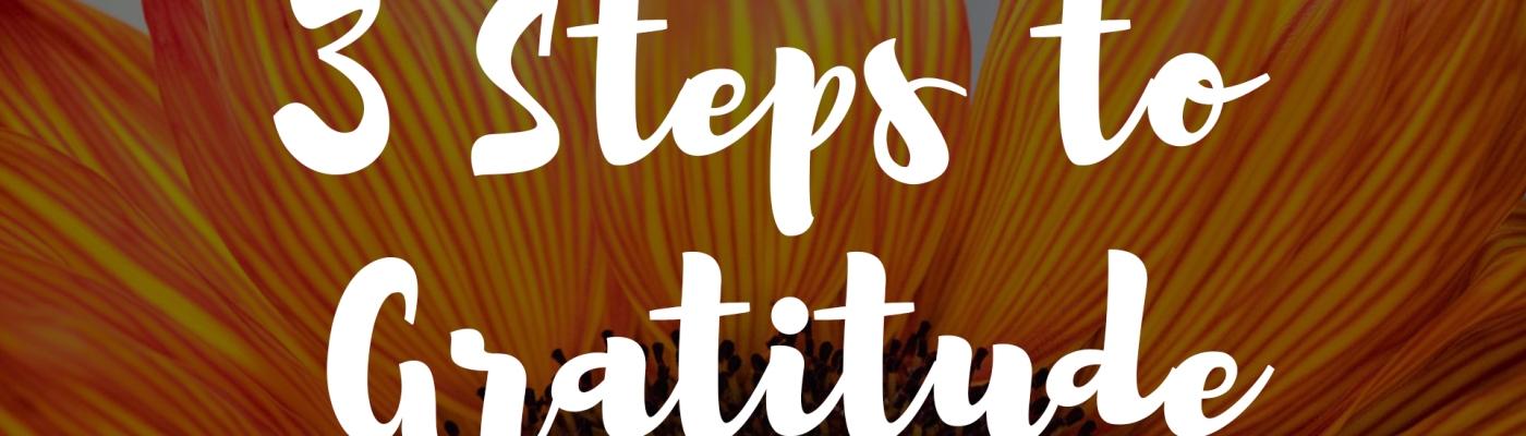 3 Steps to Gratitude, EyeBelieve